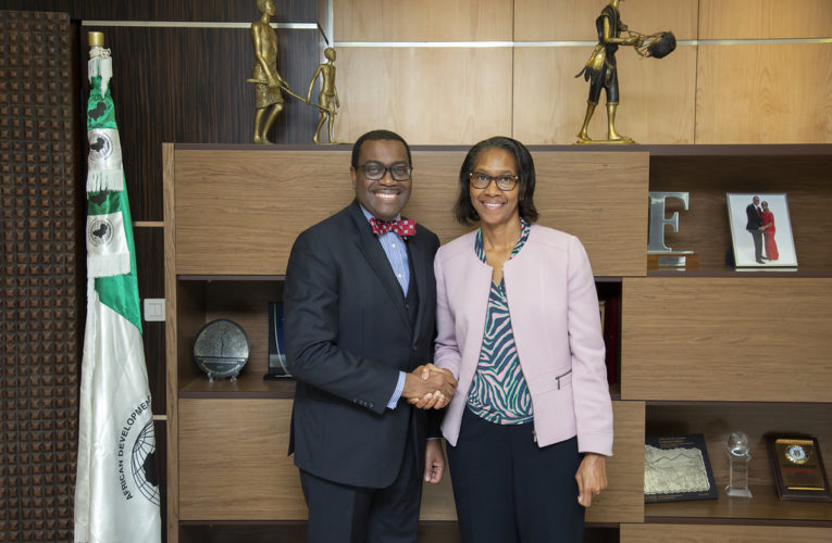 AfDB Appoints Wambui Gichuri As New Acting Vice President
