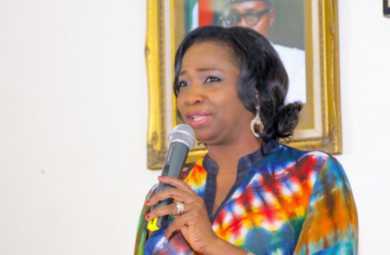Be Weary Of Sending Your Wards To Northern Cyprus- Abike Dabiri-Erewa Warns Parents