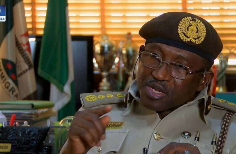 Nigeria May Reciprocate Visa Restriction On Americans, Others- Immigration
